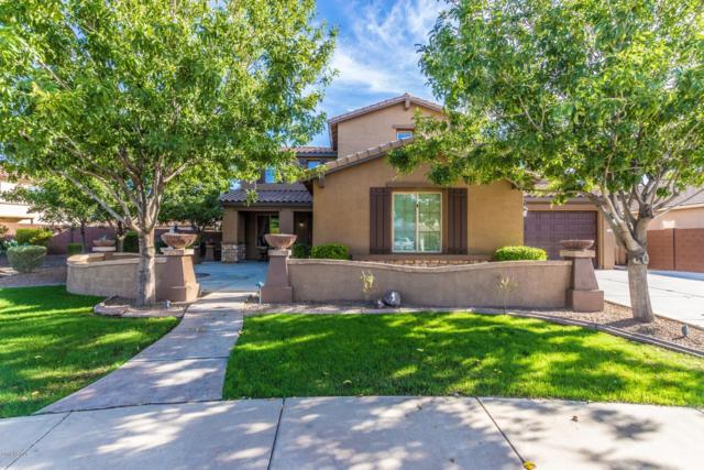 41389 N Jarnigan Place, Queen Creek, AZ 85140 (MLS #5840864) :: The Garcia Group