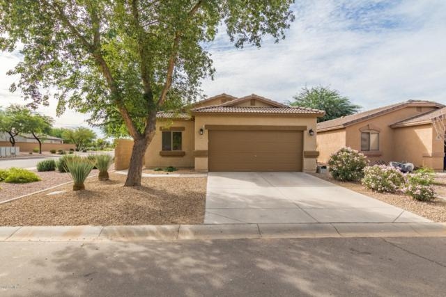1313 E Press Place, San Tan Valley, AZ 85140 (MLS #5840900) :: Lux Home Group at  Keller Williams Realty Phoenix