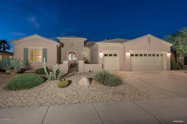 17246 W Hermosa Drive, Surprise, AZ 85387 (MLS #5840903) :: Lifestyle Partners Team