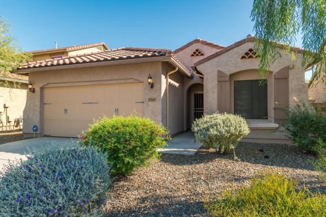 27527 N 17TH Lane, Phoenix, AZ 85085 (MLS #5840960) :: RE/MAX Excalibur