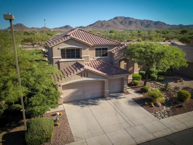 41233 N Sutter Lane, Anthem, AZ 85086 (MLS #5840992) :: The Daniel Montez Real Estate Group