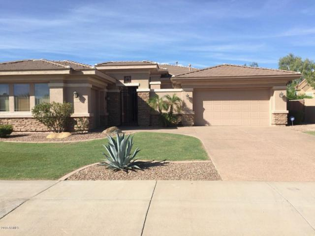 4468 E Cabrillo Drive, Gilbert, AZ 85297 (MLS #5841014) :: The Jesse Herfel Real Estate Group