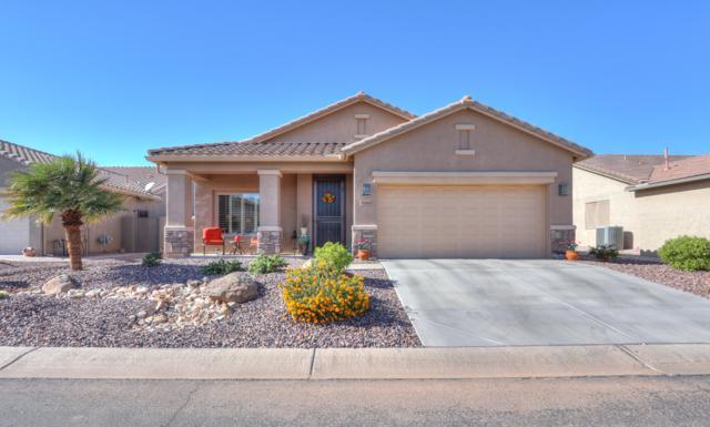5260 N Willcox Drive, Eloy, AZ 85131 (MLS #5841056) :: Yost Realty Group at RE/MAX Casa Grande