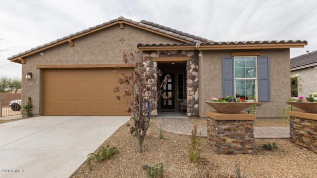 11738 N 162nd Lane, Surprise, AZ 85379 (MLS #5841111) :: RE/MAX Excalibur