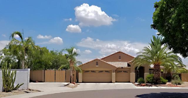 20947 N 79TH Avenue, Peoria, AZ 85382 (MLS #5841299) :: The Laughton Team