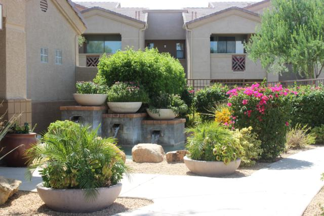 29606 N Tatum Boulevard #142, Cave Creek, AZ 85331 (MLS #5841323) :: The Wehner Group