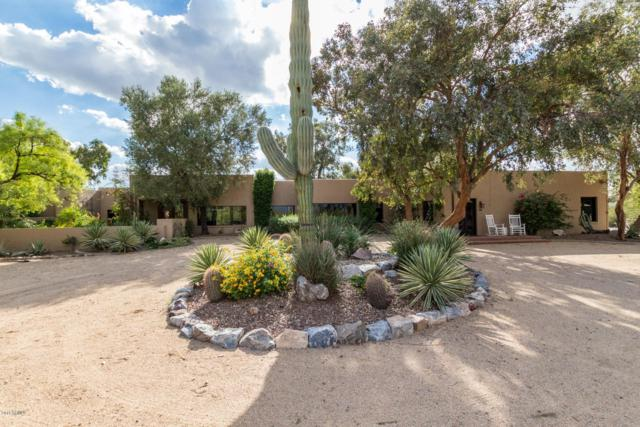 3835 E Sahuaro Boulevard, Phoenix, AZ 85028 (MLS #5841326) :: The Kenny Klaus Team