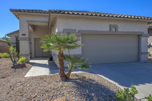 6419 W Molly Lane, Phoenix, AZ 85083 (MLS #5841389) :: The Garcia Group