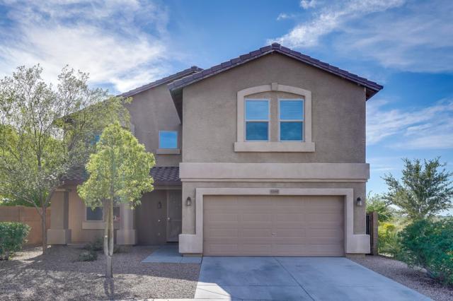 12061 W Louise Court, Sun City, AZ 85373 (MLS #5841438) :: Arizona Best Real Estate