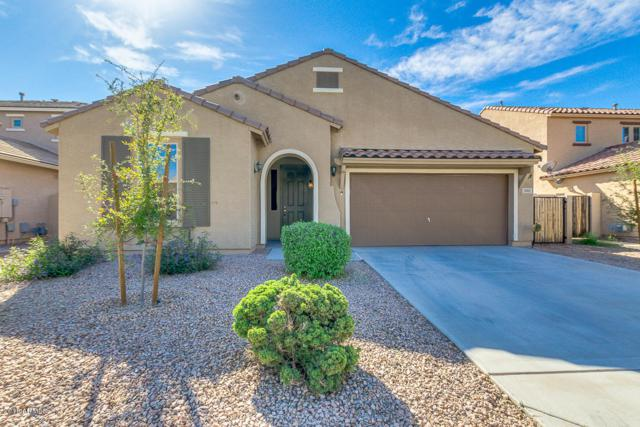 3001 E Meadowview Drive, Gilbert, AZ 85298 (MLS #5841510) :: Team Wilson Real Estate