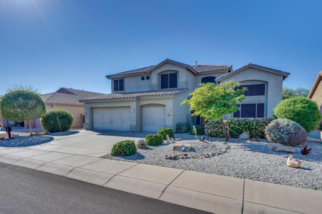25420 N 72ND Avenue, Peoria, AZ 85383 (MLS #5841622) :: Yost Realty Group at RE/MAX Casa Grande