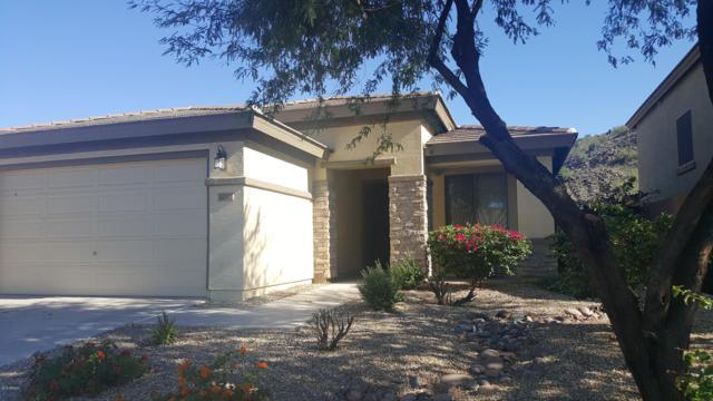 30327 N 71ST Avenue N, Peoria, AZ 85383 (MLS #5841634) :: The Garcia Group