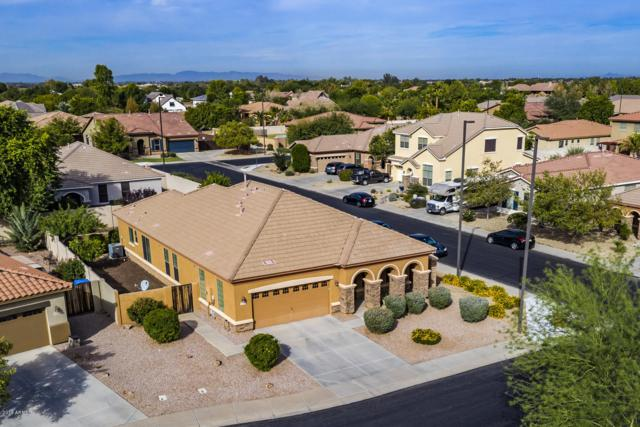 6676 S Rockwell Street, Gilbert, AZ 85298 (MLS #5841637) :: Group 46:10