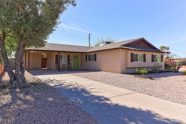 8701 E Edgemont Avenue, Scottsdale, AZ 85257 (MLS #5841669) :: Arizona 1 Real Estate Team