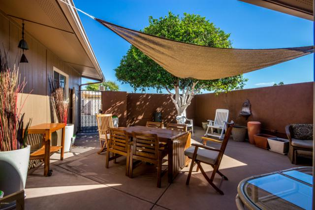 9930 W Palmeras Drive, Sun City, AZ 85373 (MLS #5841699) :: Team Wilson Real Estate