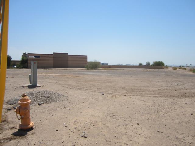 0 S Litchfield Road, Goodyear, AZ 85338 (MLS #5841757) :: Riddle Realty Group - Keller Williams Arizona Realty