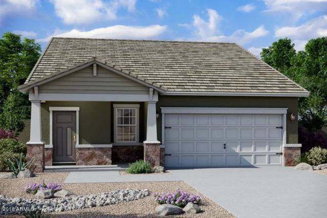 20194 W Mesquite Drive, Buckeye, AZ 85326 (MLS #5841759) :: RE/MAX Excalibur