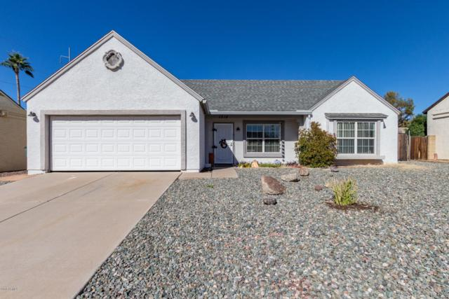 1214 E Piute Avenue, Phoenix, AZ 85024 (MLS #5841830) :: Team Wilson Real Estate