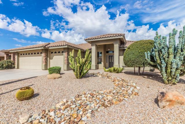 10920 E Plata Avenue, Mesa, AZ 85212 (MLS #5841850) :: The Garcia Group