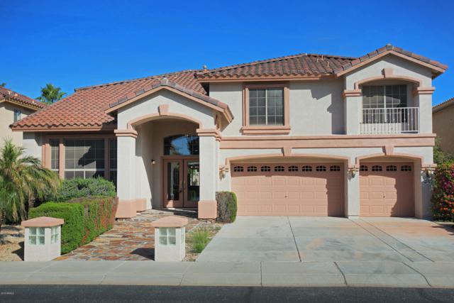 13322 W Rancho Drive, Litchfield Park, AZ 85340 (MLS #5841856) :: The Results Group