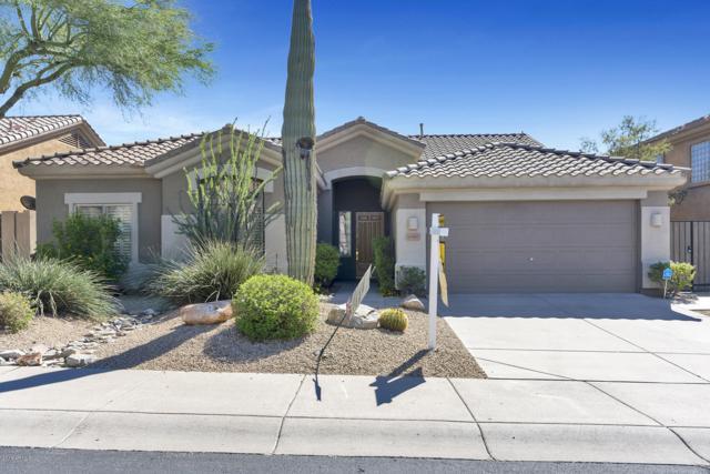 10443 E Sheena Drive, Scottsdale, AZ 85255 (MLS #5841873) :: The W Group