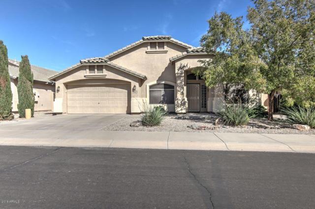 432 E Chicory Place, San Tan Valley, AZ 85143 (MLS #5841893) :: Devor Real Estate Associates