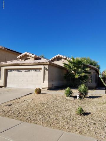 2304 E Kelton Lane, Phoenix, AZ 85022 (MLS #5841910) :: The Garcia Group
