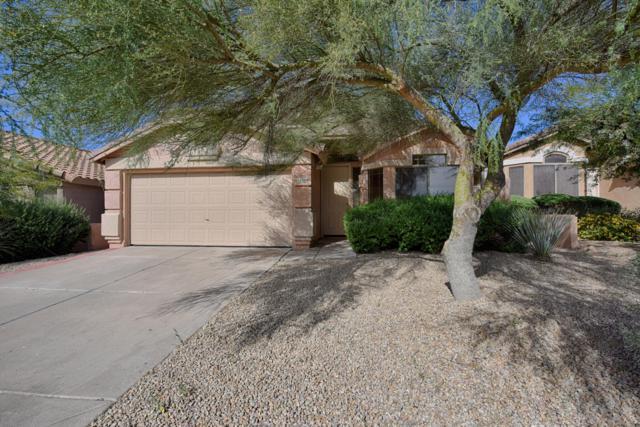 10254 E Blanche Drive, Scottsdale, AZ 85255 (MLS #5841915) :: RE/MAX Excalibur