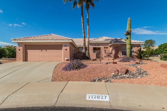 12827 W Meeker Boulevard, Sun City West, AZ 85375 (MLS #5841925) :: The Garcia Group