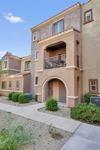 3935 E Rough Rider Road #1363, Phoenix, AZ 85050 (MLS #5841997) :: The Jesse Herfel Real Estate Group
