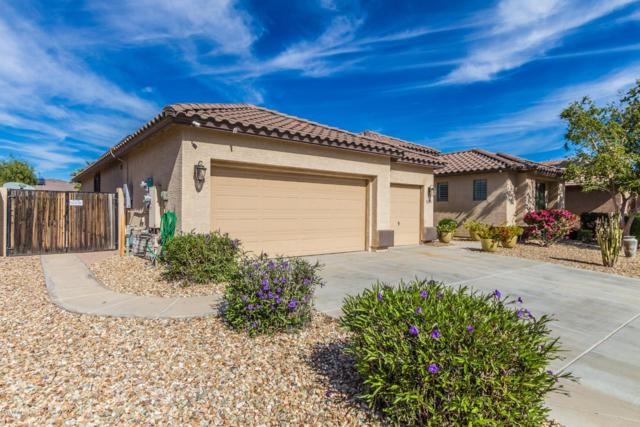 18458 W Marconi Avenue, Surprise, AZ 85388 (MLS #5842026) :: Conway Real Estate