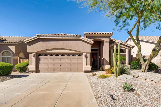 3514 N Paseo Del Sol, Mesa, AZ 85207 (MLS #5842045) :: The Jesse Herfel Real Estate Group