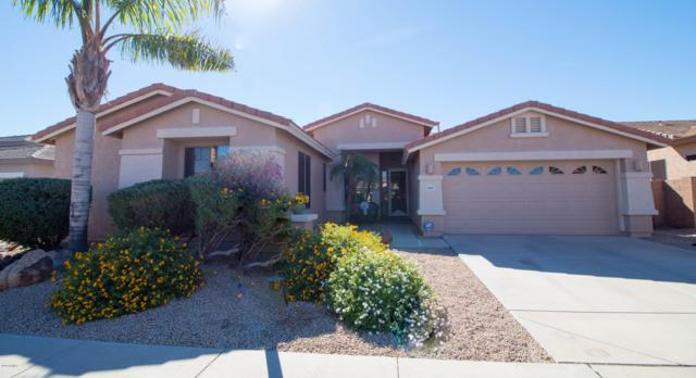 16815 W Halifax Street, Surprise, AZ 85374 (MLS #5842053) :: Riddle Realty