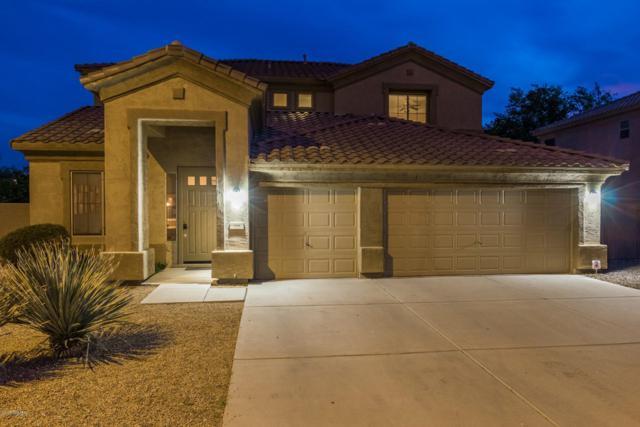 1215 W Remington Drive, Chandler, AZ 85286 (MLS #5842055) :: Lifestyle Partners Team