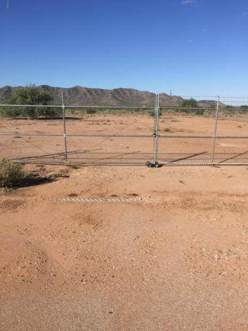 0 S Guano Road, Eloy, AZ 85131 (MLS #5842068) :: Brett Tanner Home Selling Team