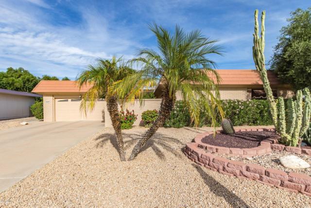9128 W Hutton Drive, Sun City, AZ 85351 (MLS #5842074) :: Riddle Realty