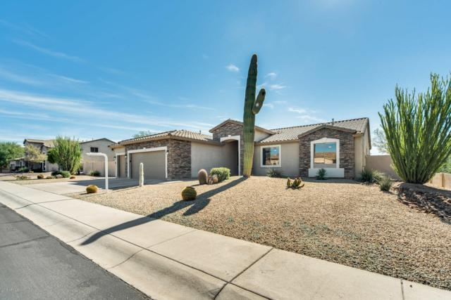 7923 E Kael Street, Mesa, AZ 85207 (MLS #5842085) :: The W Group