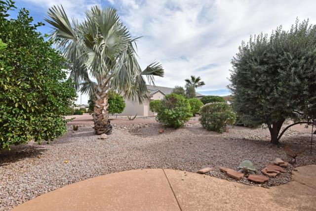 18239 N Petrified Forest Drive, Surprise, AZ 85374 (MLS #5842111) :: The Jesse Herfel Real Estate Group