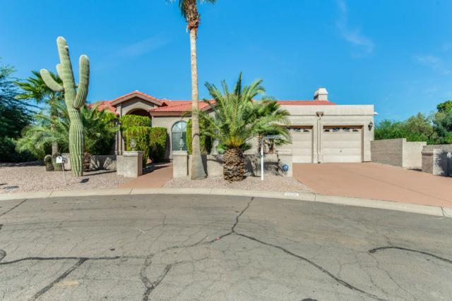 10660 N Devlin Circle, Fountain Hills, AZ 85268 (MLS #5842149) :: CC & Co. Real Estate Team