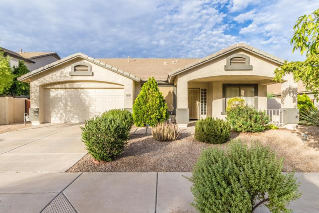 16630 W Pierce Street, Goodyear, AZ 85338 (MLS #5842160) :: CC & Co. Real Estate Team