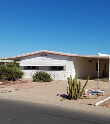 9063 E Olive Lane S, Sun Lakes, AZ 85248 (MLS #5842161) :: The Jesse Herfel Real Estate Group