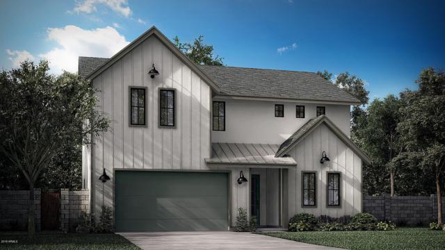 4007 E Campus Drive, Phoenix, AZ 85018 (MLS #5842189) :: Arizona 1 Real Estate Team