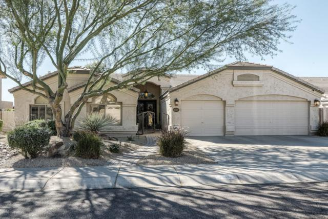 4019 E Robin Lane, Phoenix, AZ 85050 (MLS #5842283) :: The Carin Nguyen Team