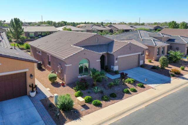 41963 W Solitaire Drive, Maricopa, AZ 85138 (MLS #5842358) :: Gilbert Arizona Realty