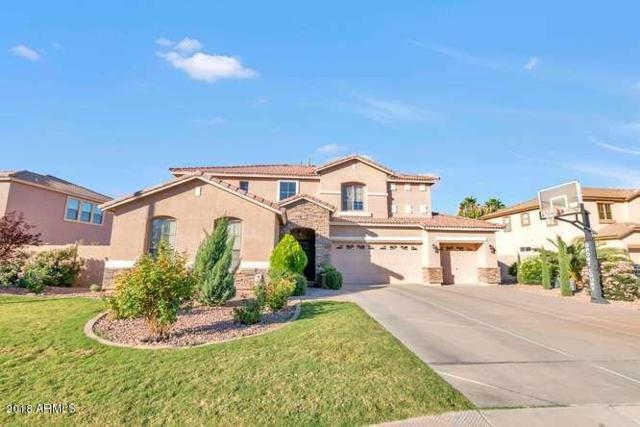 3752 S Martingale Road, Gilbert, AZ 85297 (MLS #5842411) :: Yost Realty Group at RE/MAX Casa Grande