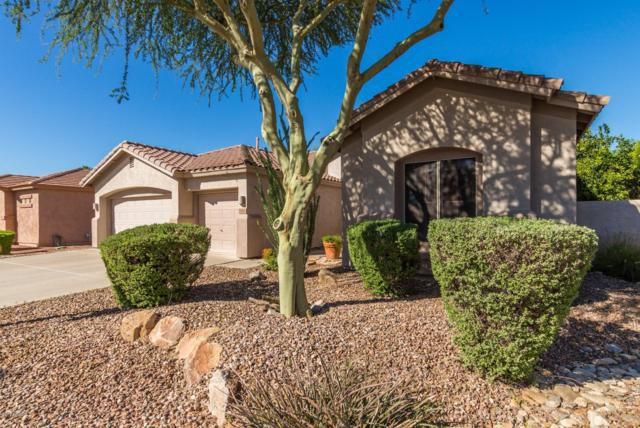2350 E Indian Wells Drive, Chandler, AZ 85249 (MLS #5842427) :: The Garcia Group