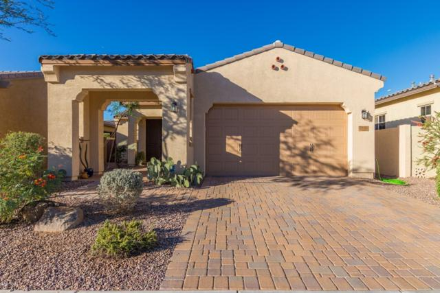 2890 E Citrus Way, Chandler, AZ 85286 (MLS #5842439) :: Kepple Real Estate Group