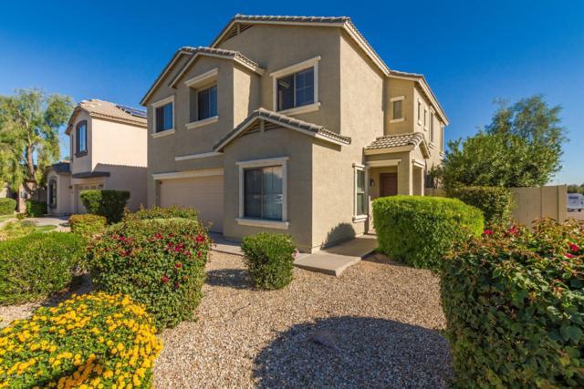 15211 N 173RD Lane, Surprise, AZ 85388 (MLS #5842504) :: Occasio Realty