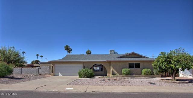 3918 N 85 Street, Scottsdale, AZ 85251 (MLS #5842563) :: Riddle Realty