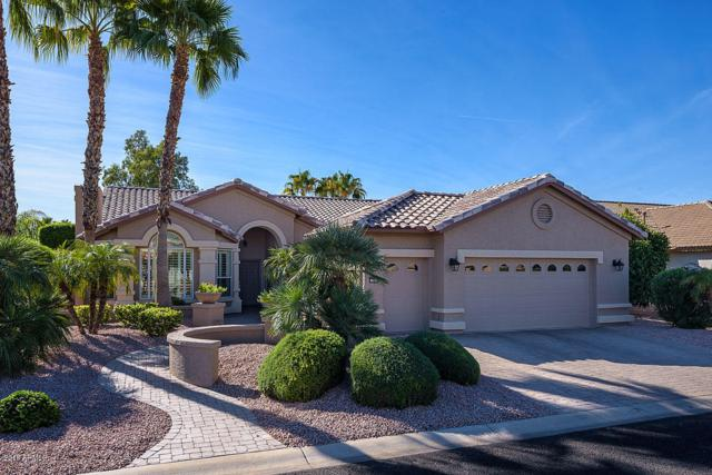 15903 W Edgemont Avenue, Goodyear, AZ 85395 (MLS #5842698) :: Arizona 1 Real Estate Team